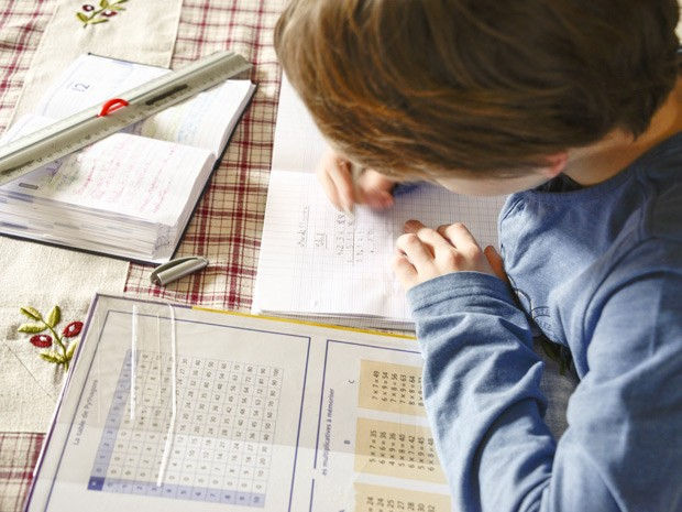 Mesmo grupo de genes que favorecem habilidades em matemática também contribuem com leitura (Foto: AJ Photo/BSIP)