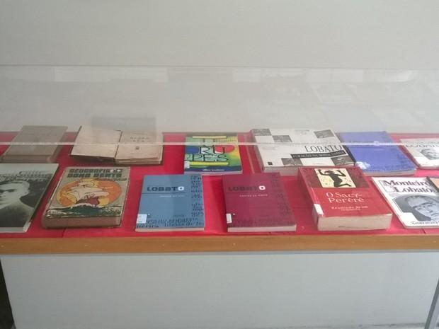 Exposição de obras de Monteiro Lobato inclui títulos em braile (Foto: Reprodução/Secult-ES)